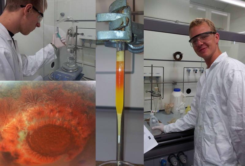 Schüler der Albert-Schweitzer-Schule experimentieren im Unilabor